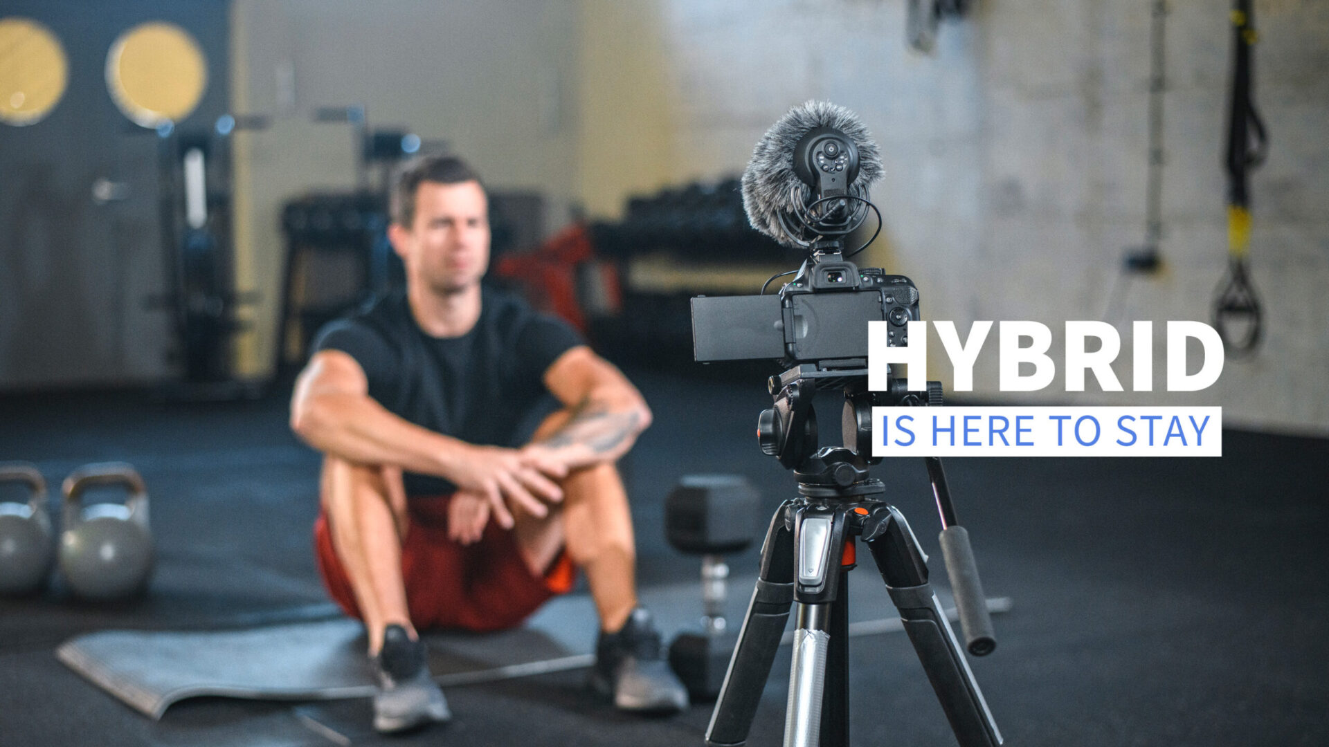 Hybrid is here to stay