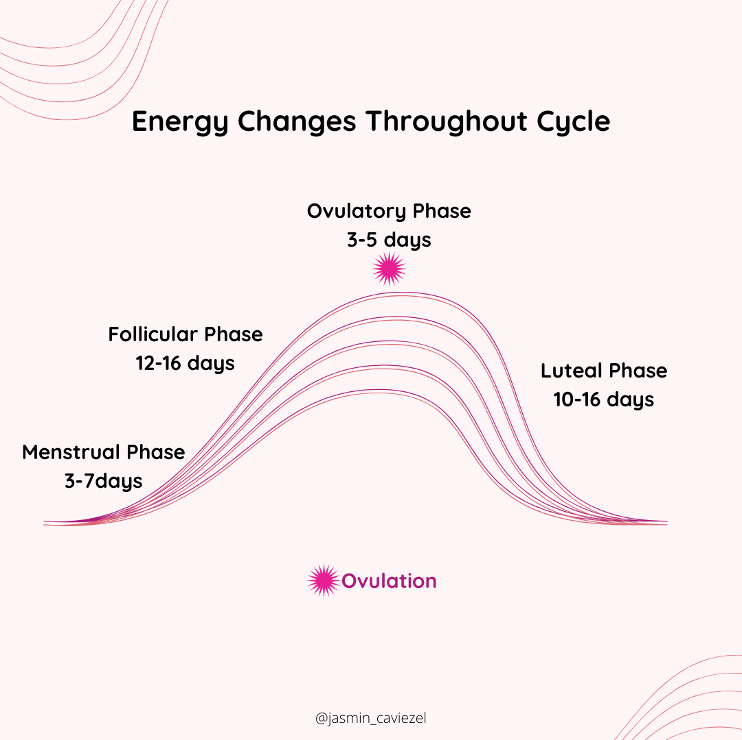 Image: Energy Changes Throughout Cycle