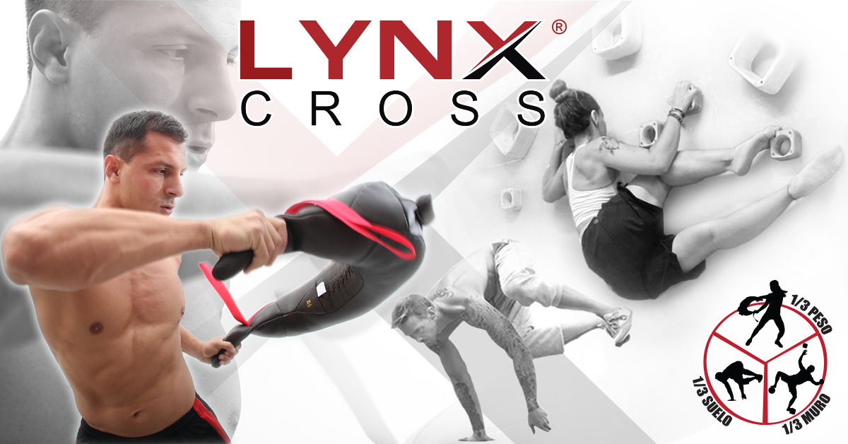 Bild: LynxCross